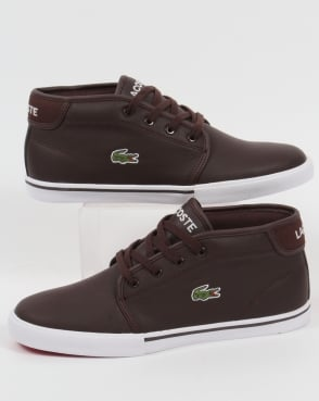 Lacoste Footwear Lacoste Ampthill Leather Trainers Dark Brown