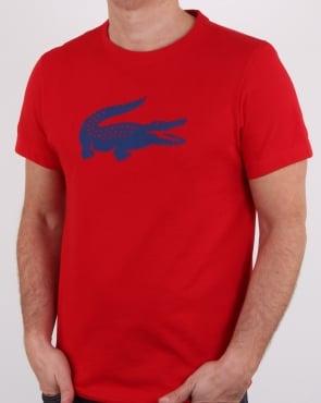 Lacoste Croc Print T Shirt Red/marino
